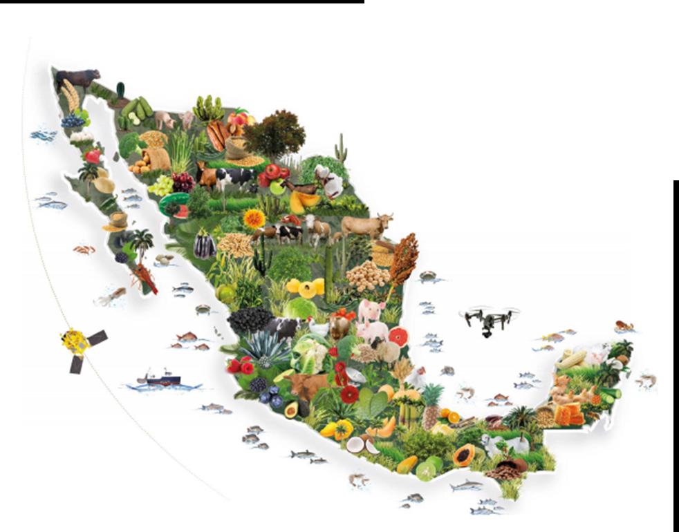 Estados agrícolas de México