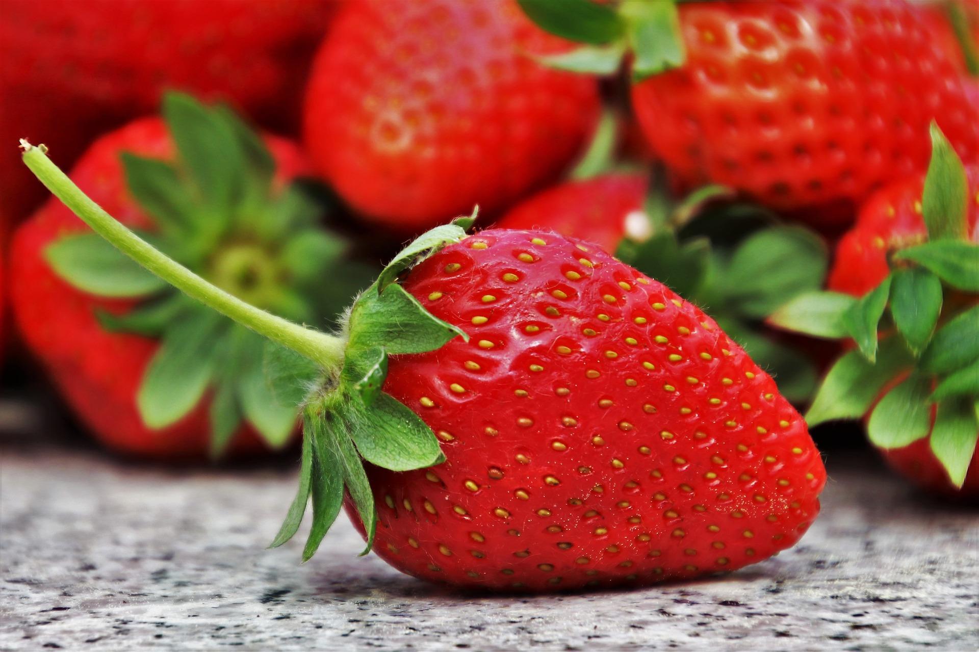 Niveles de referencia foliar en el cultivo de fresa