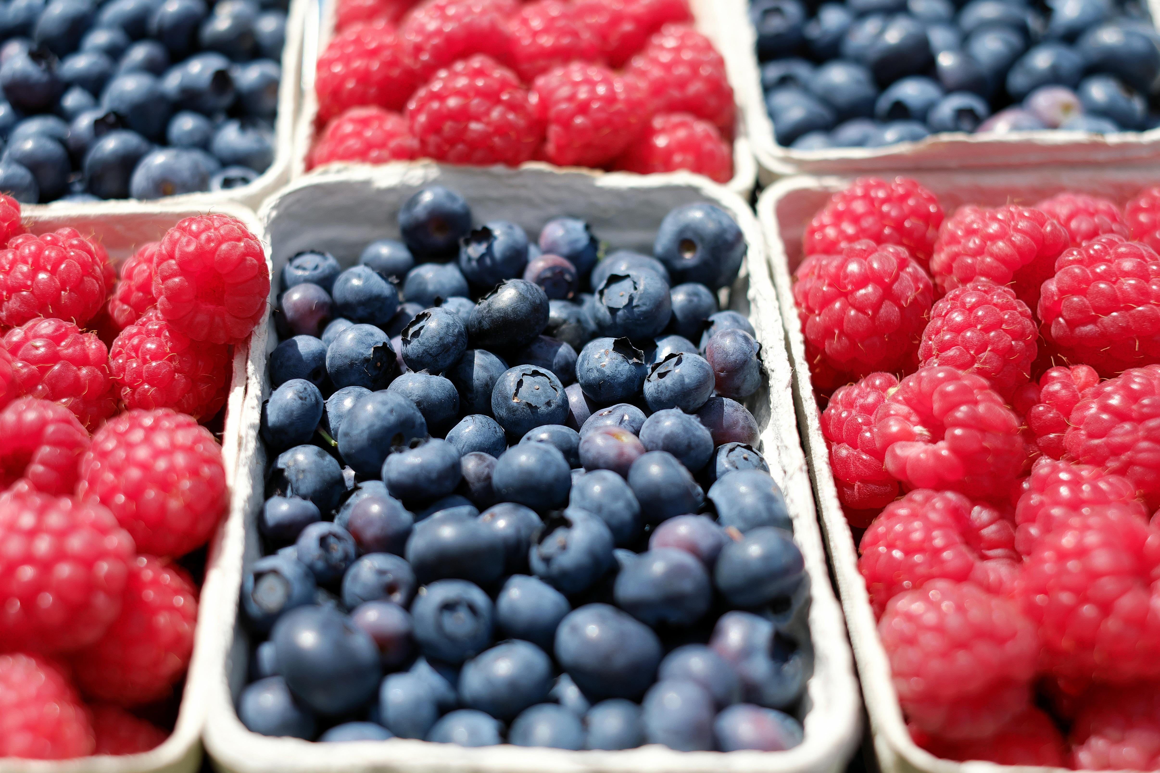 Producción de berries en México