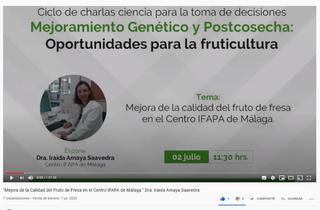 Mejora de la Calidad del Fruto de Fresa en Centro IFAPA de Málaga