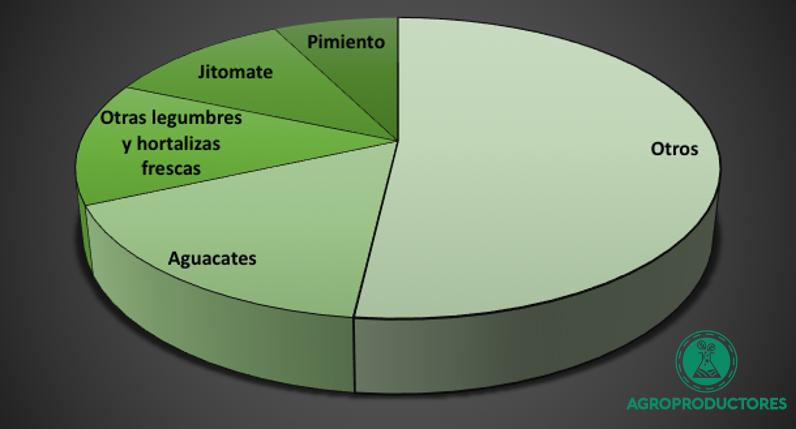 Exportación de pimiento Morrón