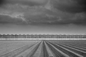 Innovación en la agricultura