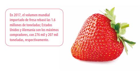 Fresa en méxico