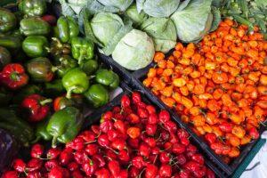 ¿Qué acciones podemos hacer para que la agricultura sea sostenible?
