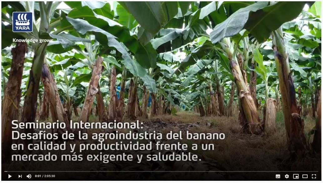 Seminario Internacional en el cultivo del Banano (Dia 1)